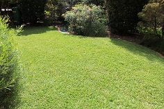 lawn mowing Work done by KDR Property Services